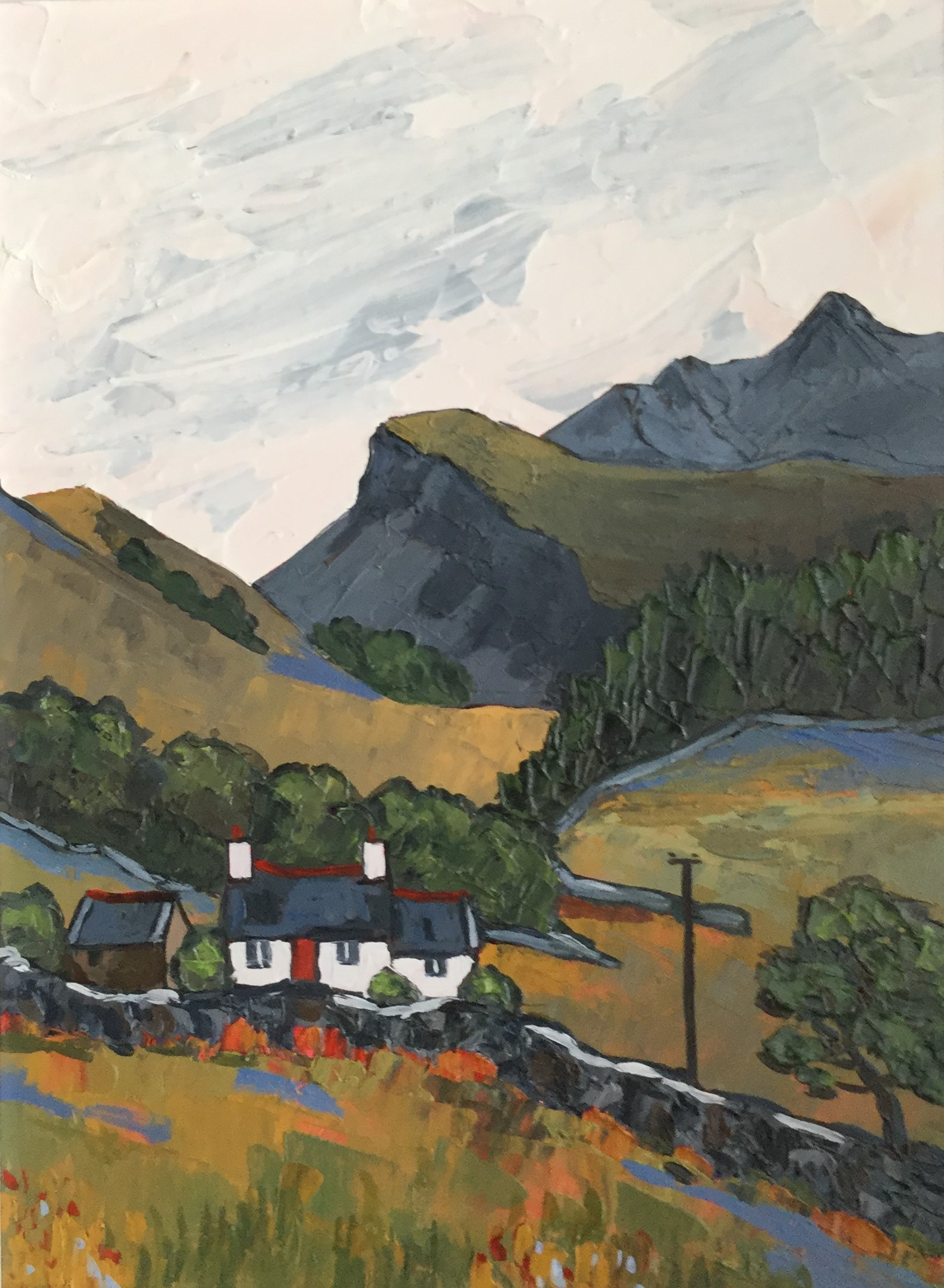 """""""Near Corris, Gwynedd"""""""